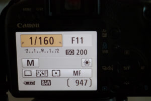 P1000030 [1]