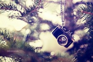 camera-christmas-christmas-tree-Favim.com-281463-300x200[1]