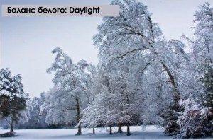 Съемка зимой: полезные советы